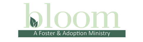 Bloom : A Foster and Adoption Ministry